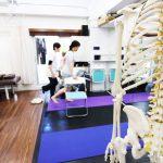 骨模型と運動療法を行なっている院内風景2