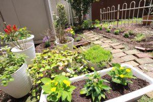 癒やしの庭