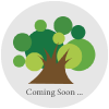 新中野にある大木接骨院のホームページは只今作成中