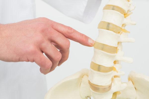 新中野にある大木接骨院では椎間板ヘルニアの解説をする。