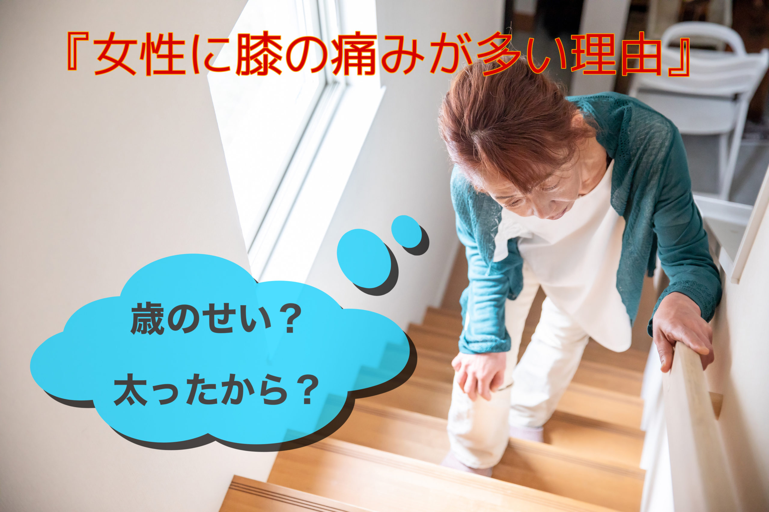 Read more about the article 女性に膝の痛みが多い理由を考える