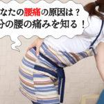 あなたの腰痛の原因は?自分の腰の痛みを知ることが大切!