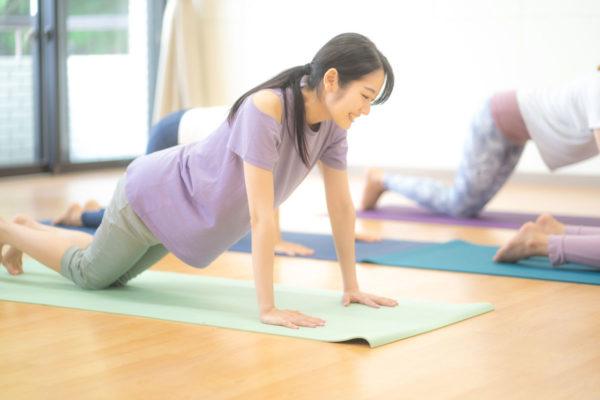 健康は自宅でのエクササイズで保たれます