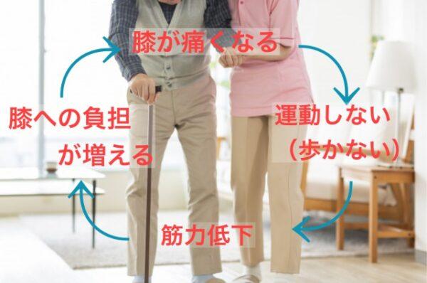 Read more about the article 家族と歩ける!旅行もできる!膝の痛みとはおさらばしましょう